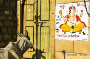 cow door india ganesha