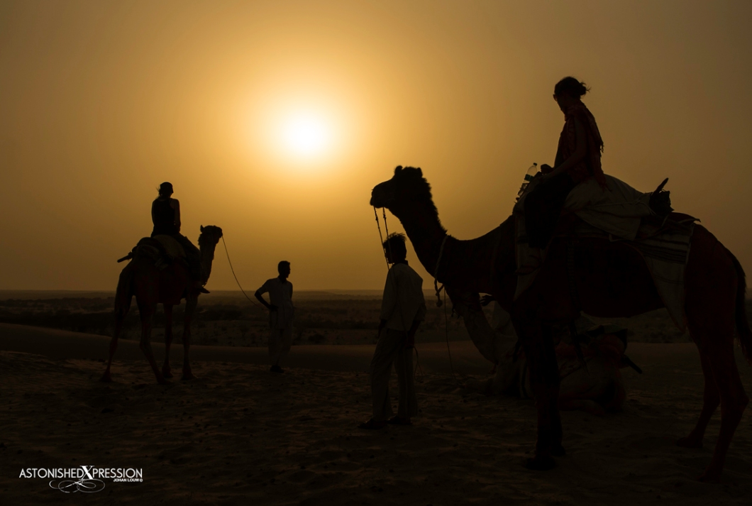 Camel safari as the sun dips over the Thar Desert